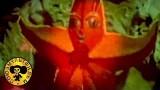 Познавательные мультики: Солнечное зёрнышко