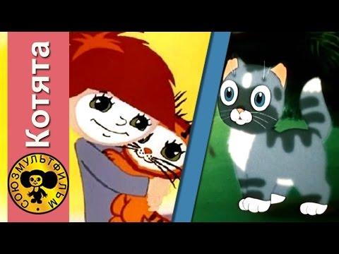 Сборник мультфильмов для детей про котят